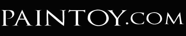 Paintoy Logo